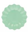 Mint diepe wegwerp bordjes 21 cm