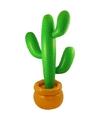Grote opblaasbare cactus
