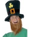 Groene dwergen hoed met rode baard