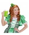 St Patricks Day gnoom mini hoedje voor volwassenen